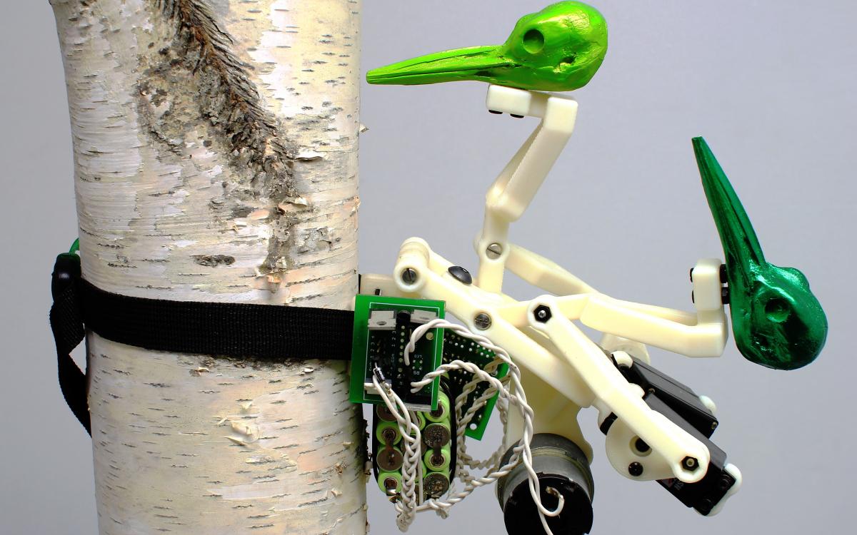 "Ian Ingram, ""The Woodiest"" (2010)"