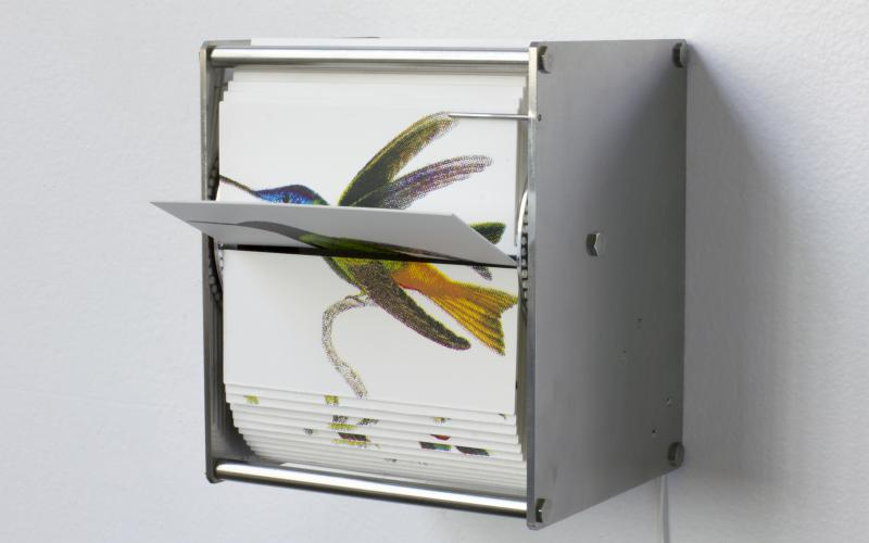 Juan Fontanive / Ornithology L1 (2018) / 4-color screen print on Bristol paper, stainless steel, motor, and electronics / 4.25 x 5 x 3.75 inches