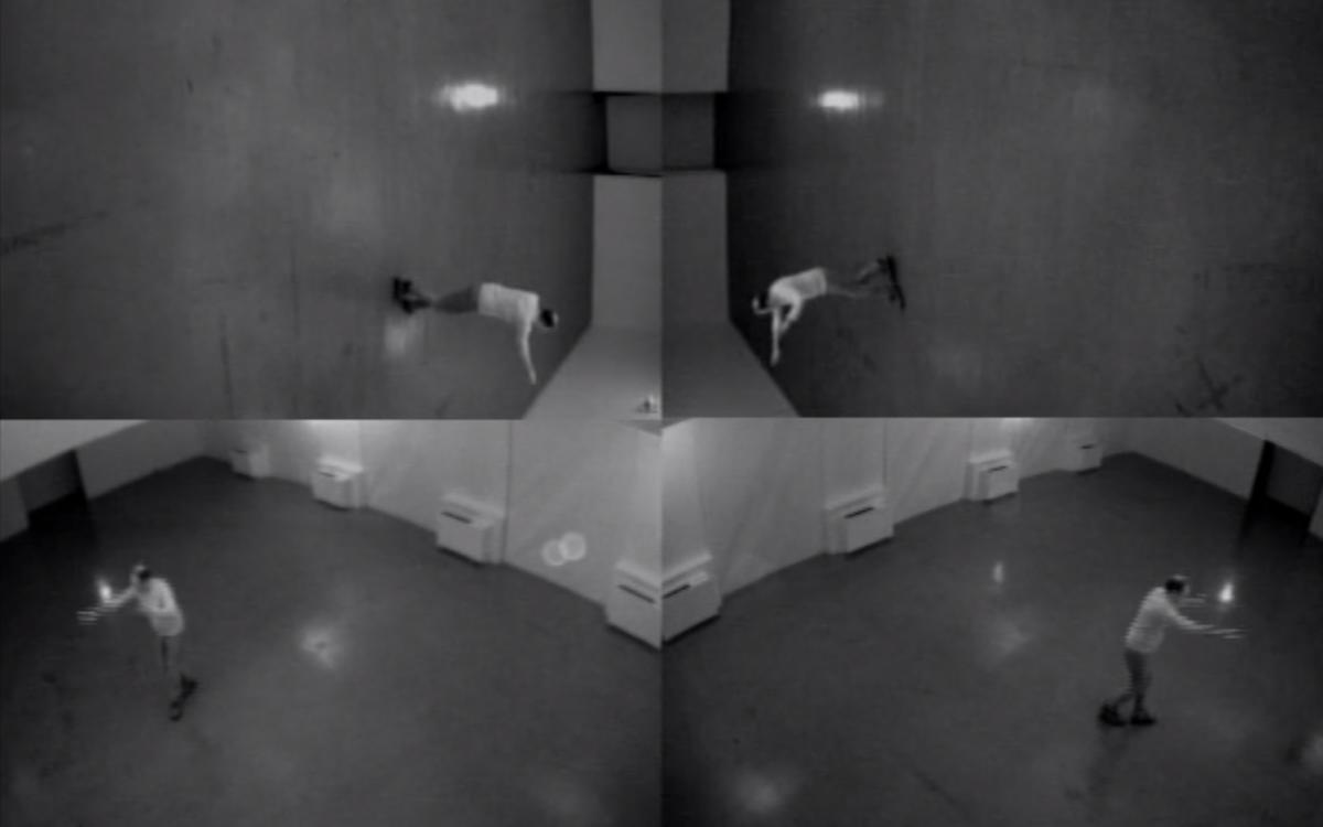David Rokeby, Dark Matter, (2010)